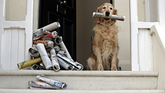 Dog Holding Newspaper